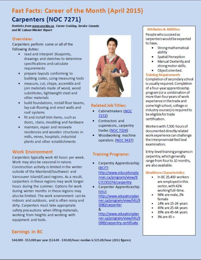 Career of the month carpentry image